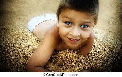 かわいい, 男の子, 遊び, 中に, トウモロコシ, 種