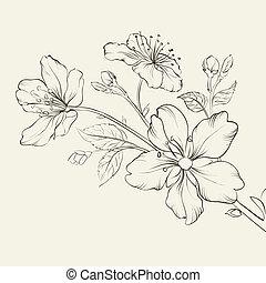 さくらんぼ, カリグラフィー, blossom.