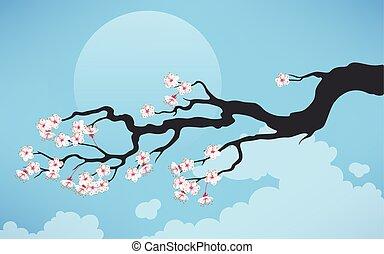 さくらんぼ, ブランチ, 咲く