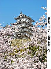 さくらんぼ, 姫路の城, 花