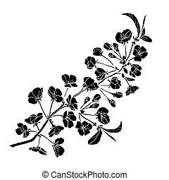 さくらんぼ, 小枝, 花
