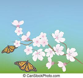 さくらんぼ, 蝶, ベクトル, ブランチ