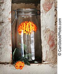 すてきである, ガラス, ∥で∥, 花