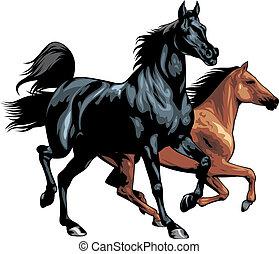 すてきである, 隔離された, 馬