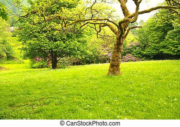 すばらしい, 春, 2, 庭