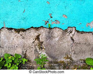 すみれ, 色, 赤, 古い, 緑, はげること, 型, ペンキ, グランジ, 黄色, 表面, background:, 青, コンクリート