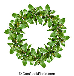つぼみ, 花, 春, 葉, 花輪, 緑, 小さい
