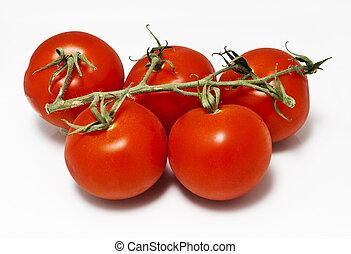 つるの上のトマト
