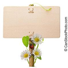 てんとう虫, ヒナギク, 木製である, テントウムシ, 上に, 白, 印, 緑の背景, ポスト, 旗, 葉