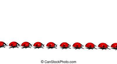 てんとう虫, 歩きなさい, 横列