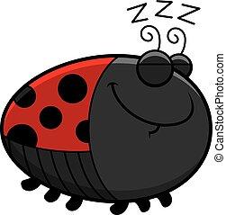 てんとう虫, 漫画, 睡眠