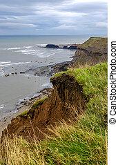 でこぼこである, 縦, 提示, 海岸, 海岸線, erosion., 打撃, 線