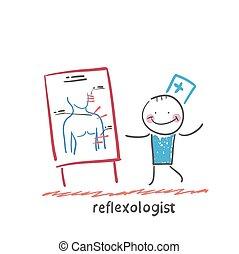 について, 前述, 人間, 反射能力, プレゼンテーション, reflexologist