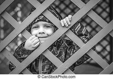 によって, わずかしか, 見る, 青, フェンス, 男の赤ん坊