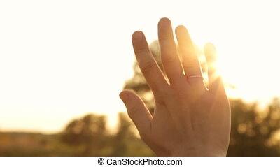 によって, 夕方, まぶしい光, 指, 太陽