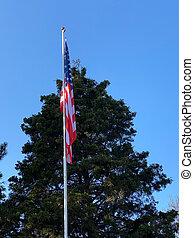 に対して, 木, 青い空, 旗, 緑の背景, flagpole, アメリカ人