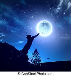 ねこ, つかまえること, 月