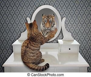 ねこ, 顔つき, 中に, 鏡, 2