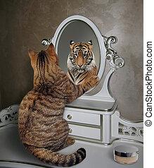 ねこ, 顔つき, 中に, 鏡, 3