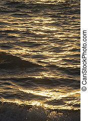 の上, 海岸, 日没, 波, 終わり, 海洋, 浜