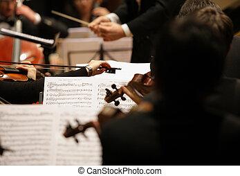 の間, バイオリン奏者, コンサート