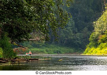 の間, 川, summer., 旅行, ボート