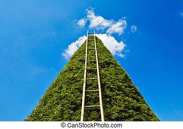 はしご, 天国
