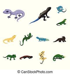 は虫類, stock., 自然, オブジェクト, 隔離された, コレクション, シンボル。, ベクトル, 動物,...