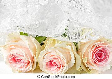ばら, レース, 背景, 結婚式