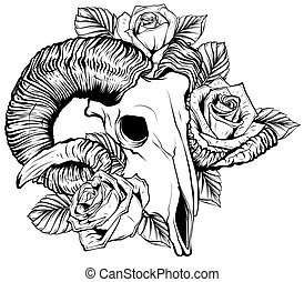 ばら, goat, すごく, illustration., シンボル, ベクトル, 魔法, 花, シャクヤク, 頭骨