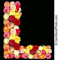ばら, l, 花, アルファベット
