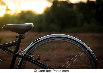 ぼんやりさせられた, bycicle, ∥で∥, 太陽, light.