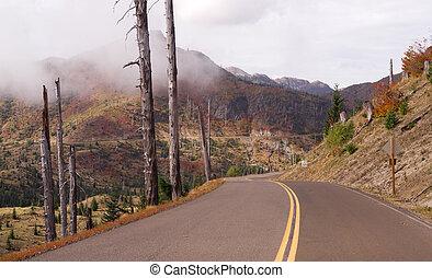まだ, 傷つけられる, 風景, 爆発, 地域, セントヘレン山, 火山
