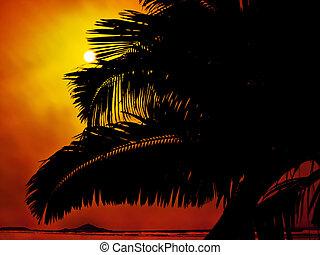 やし 浜, 木, 日没