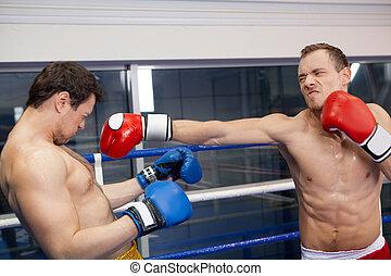 よい, punch., ボクサー, 強打する, 彼の, 対抗者, 上に, ∥, リング