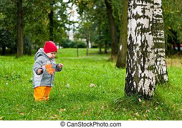 わずかしか, 古い, 公園, 歩くこと, 1(人・つ), 秋, 年, 赤ん坊, かえで