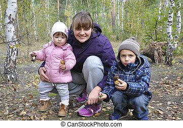 わずかしか, 娘, お母さん, 息子, 秋の森林, 保有物, シラカバ, mushrooms.
