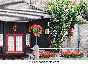 わずかしか, 絵のよう, 家, ばら, ゼラニウム, 飾られる, 白い赤