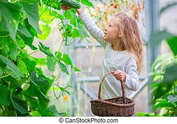 わずかしか, greenhouse., バスケット, 肖像画, 女の子, 収穫する, 愛らしい, 子供