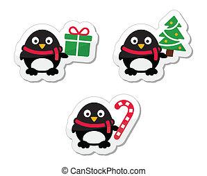 アイコン, クリスマス, ペンギン