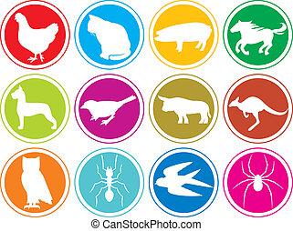 アイコン, ボタン, 動物