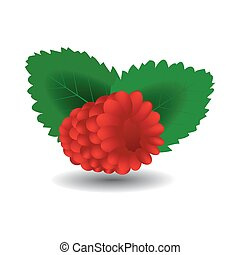 アイコン, 甘い, fruit., イラスト, 現実的, raspberry., ベクトル, set., 3d