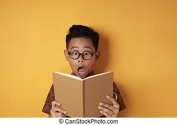 アジア人, 衝撃を与えられた, 本, 学生, いつか, 読書, 男の子, 面白い