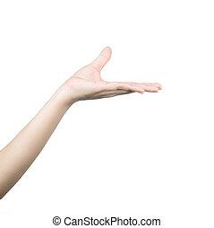 アジア 女性, 手を持つ, 空, ∥ために∥, プロダクト, ∥あるいは∥, テキスト, 隔離された, 白, 背景