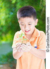 アジア 子供, 保有物, 若い, 実生植物, 植物, 中に, 手, 中に, 庭, 上に, 緑の背景, フォーカス, 上に, 手