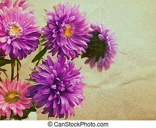 アスター, 花, 花束, 中に, retro 様式