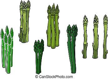 アスパラガス, 緑, やり, veggies, fleshy
