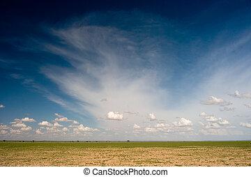 アフリカの平野