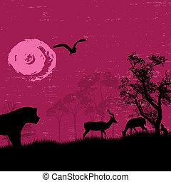 アフリカ, /, サファリ, -, シルエット, の, 野生 動物