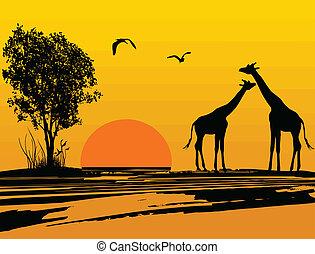 アフリカ, シルエット, キリン, 2